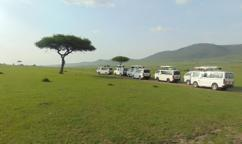 4-Day Masai Mara and Lake Naivasha