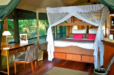 Samburu Intrepids Luxury Tented Camp